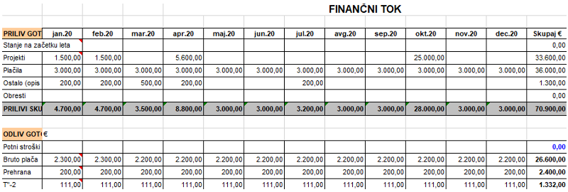 Programski paket za simulacijo finančnih tokov v NVO