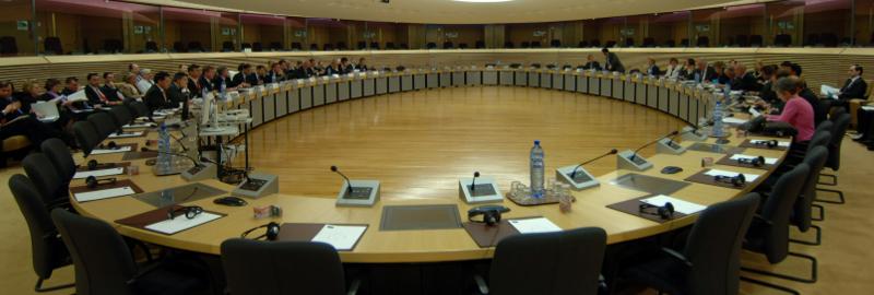 Vloga vsebinskih mrež NVO pri trajnostnemu upravljanju države Slovenije